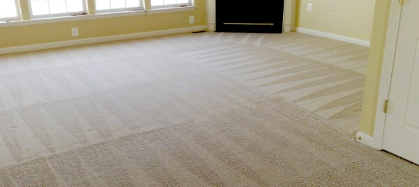 Carpet Cleaning Made Easy